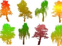 Colourful-Tree-Silhouettes