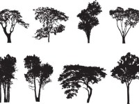8-Tree-Silhouette-Vectors