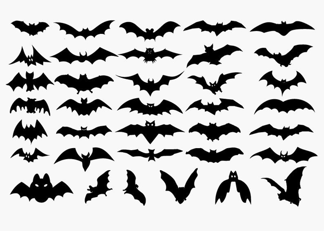 Vector-Set-of-Halloween-Bat-Silhouette