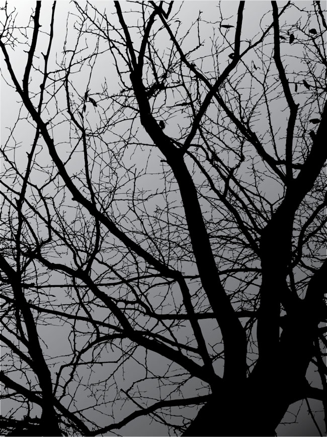 Dark-Tree-Vector