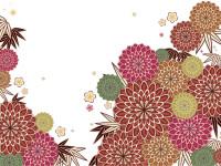 Japanese-Cherry-Vector-background