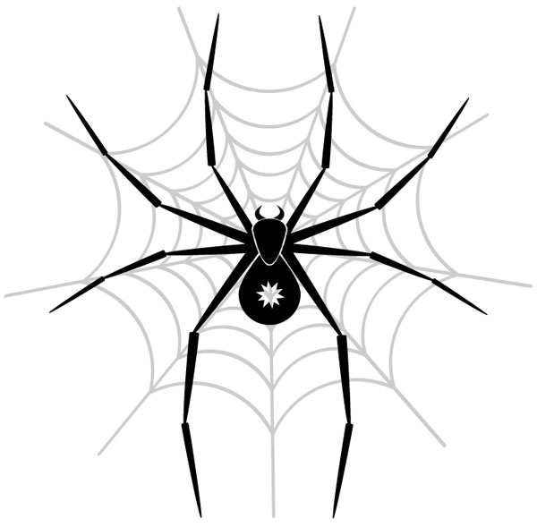 Spider-in-the-net-vector