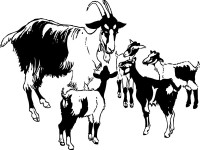 Goat-And-Kids-clip-art