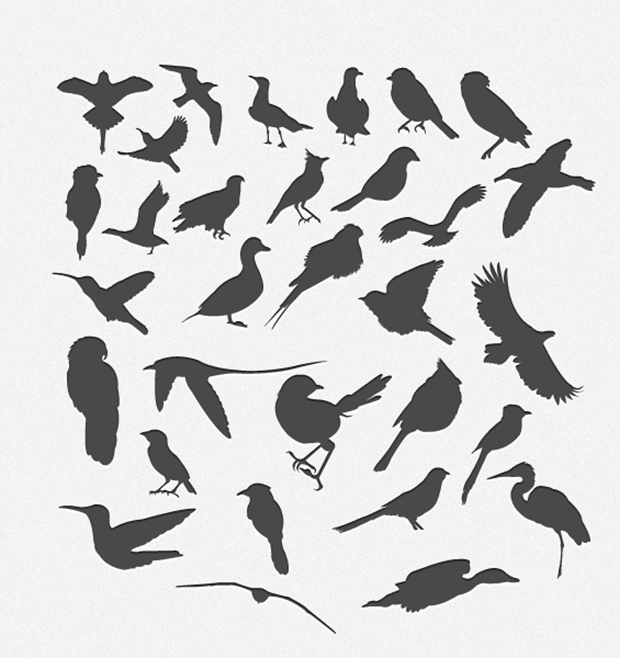 30-Bird-Silhouttes-Pack-Vector