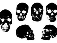 Skull-Vector-Package-EPS