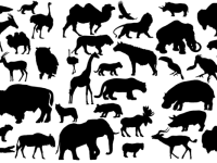 41-Animal-Vector-Silhouettes