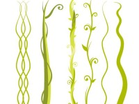 6-Jungle-Plant-Vine-Beanstalk-Vectors