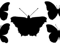 Butterfly-Silhouettes-Free-Vector