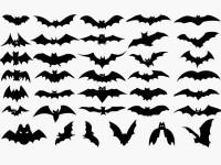 Vector-Set-of-Halloween-Bat-Silhouette