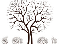 Leafless-Autumn-Tree-Design-Vector
