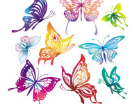 Butterfly-Vector