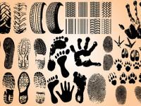 Hand-Foot-Tire-Track-Prints-Vector-Set