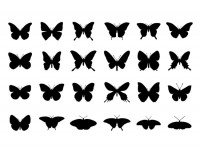 24-butterfly-silhouettes